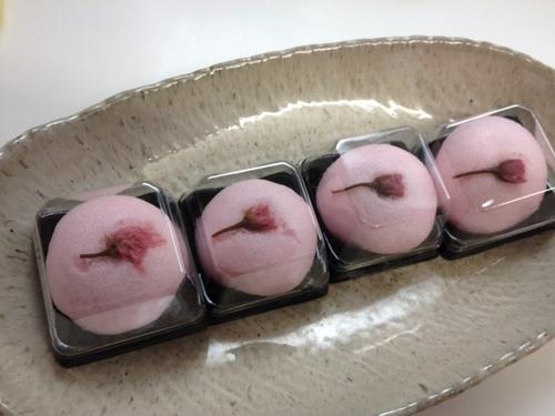 sakurajyo-yo-.JPG
